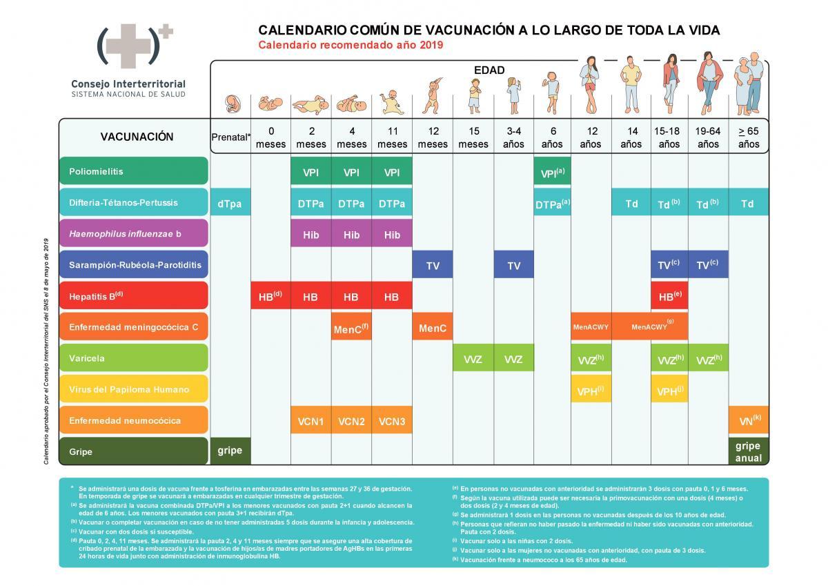 Calendario Del Ano 1965.7 Calendarios De Vacunacion En Espana Comite Asesor De