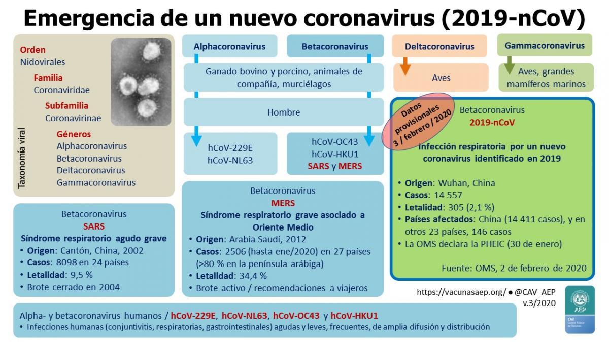 estructura de los virus pdf